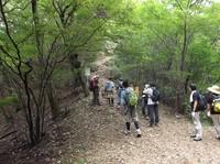 20120922伊豆ヶ岳 (8).JPG