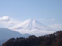 20121125御前山・九鬼山 (14).JPG